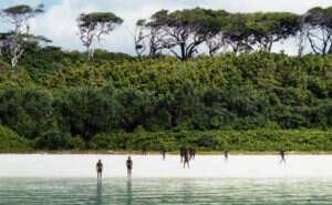 isolated tribe sentinel island andaman madhumala chattopadhyay india 4 5c0e4016eec92  700 300x185 - 27 χρόνια πριν Μια γυναίκα επικοινώνησε με την φυλή που σκότωσε τον John Chau και η συνάντησή της ήταν εντελώς διαφορετική